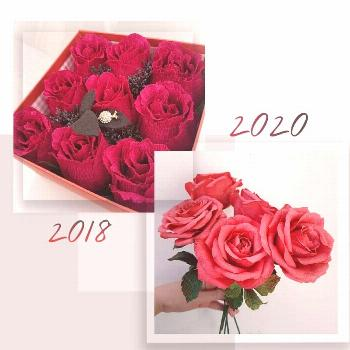 flower, text that says '2020 2018'