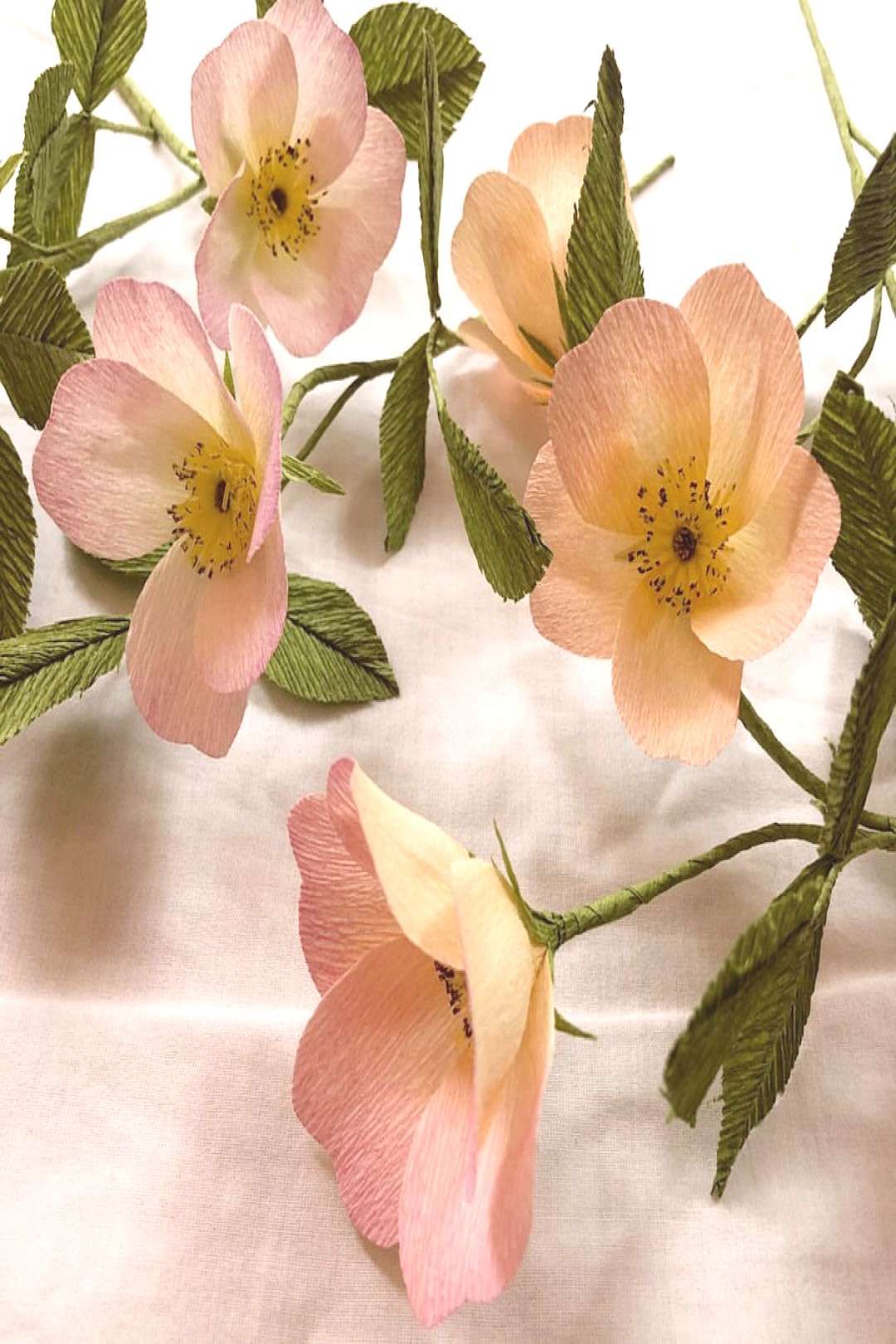 Help Ive gone a little wild rose crazy! . They tell me, quotgrief i