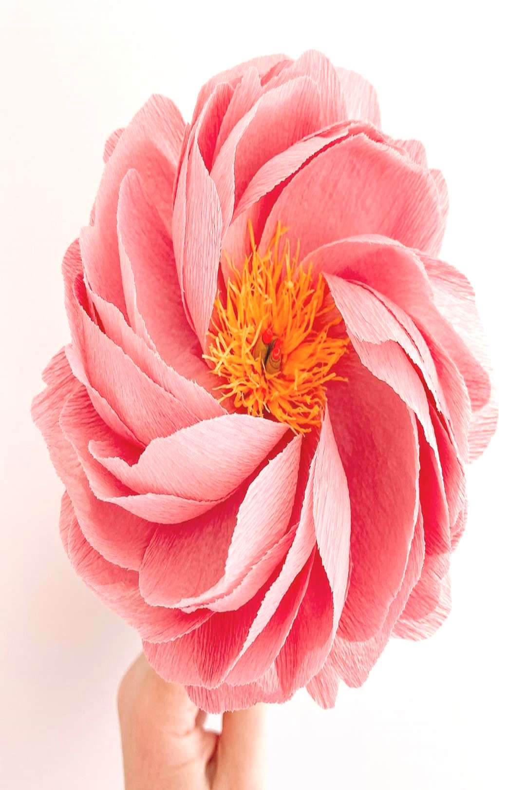 Made this peony with 90g crepe. So pretty. The paper stretches so
