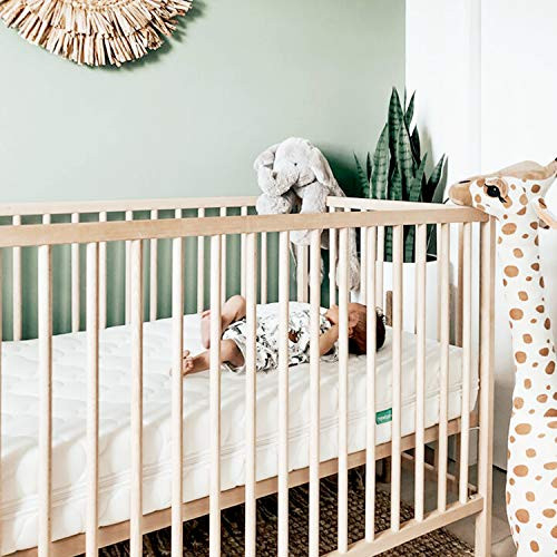 Newton Baby Crib Mattress and Toddler Bed - 100% Breathable